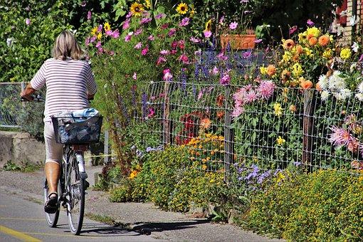 bike-4569776__340